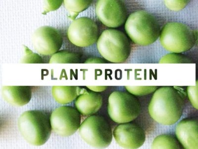 Why plant protein is better for you than animal protein