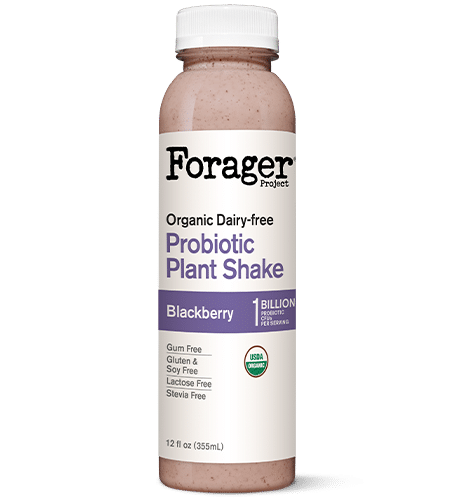 Organic Blackberry Probiotic Vegan Shake
