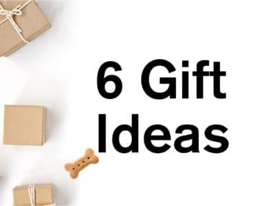 Our Favorite Holiday Gift Ideas